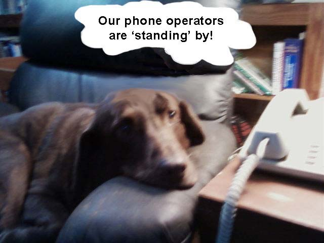 phone operators standing by